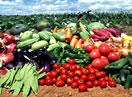 抚宁生态农业示范园