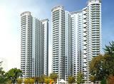 秦皇国际公寓